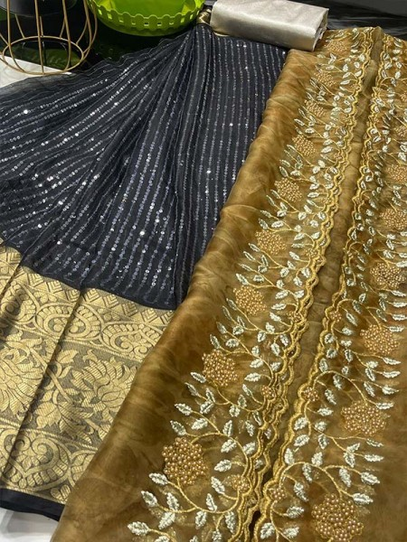 Classic Look organza lehanga with sequencing lines & Pure weaving border