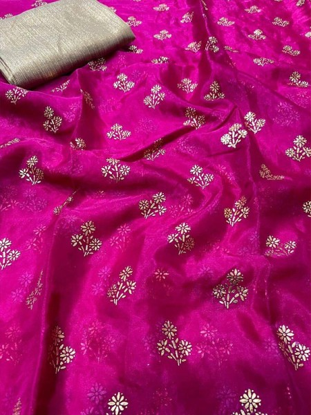Embossed Look Pure Organza Saree with embossed foil